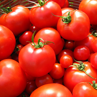 Tomato Compounds Promote Healthy Skin