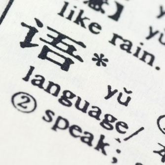 Language Comprehension Boosts Brain Skills