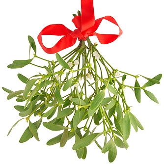 Mistletoe May Combat Cancer