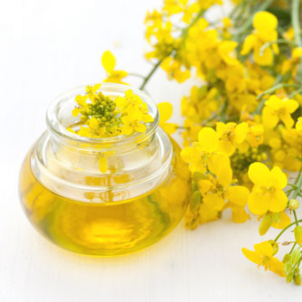 Cut Fat by Choosing Canola