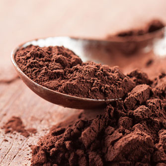 Cocoa Compounds May Prevent Weight Gain