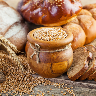 Whole Grains Increase Metabolism and Weight Loss