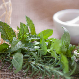 Spearmint & Rosemary in the Battle Against Alzheimer's