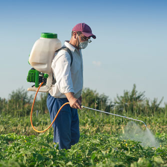 Insecticides Pose Neurological Risks