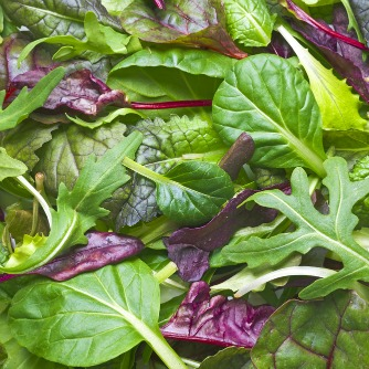 Compound in Leafy Greens Enhances Visual Processing Speed