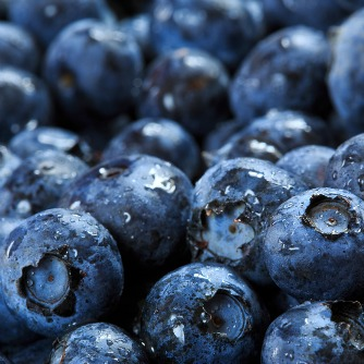 Blueberry Compound Combats Body Fat