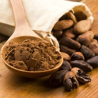 Cocoa Compounds Enhance Brain Region Involved in Memory