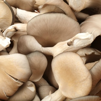Mushrooms for Diabetes