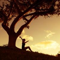 The Healing Power of Gratitude