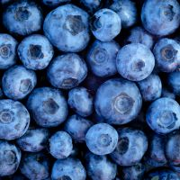 Blueberries Bump Up Blood Vessel Health