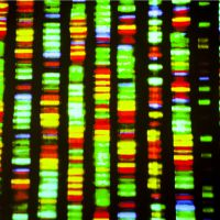 Harnessing Data on Genetic Patterns of Longevity
