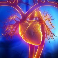 Menopause As Heart Disease Risk Factor