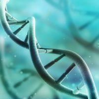 Genetic Cost of Lost Sleep