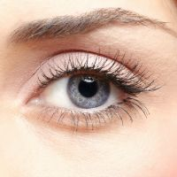 Plant Compounds Support Eye Health