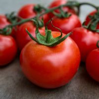 Tomatoes May Trigger Gout