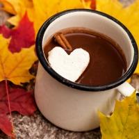 Cocoa for Cardiovascular Health