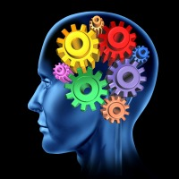 Fitness Linked to Improved Cognitive Function