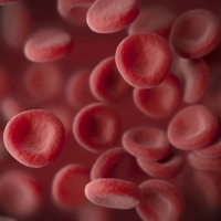 Multiple Sclerosis Blood Biomarker Discovered