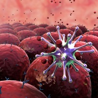 Revolutionary Immune System Discovery