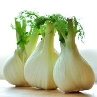 Fennel Reduces Postmenopause Symptoms