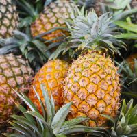 Bromelain (Pineapple enzyme)