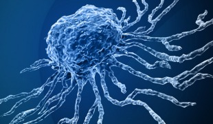 Triggering Stem Cells for Accelerated Healing