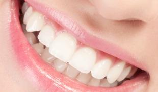 Stem Cells Induce Teeth to Self-Repair