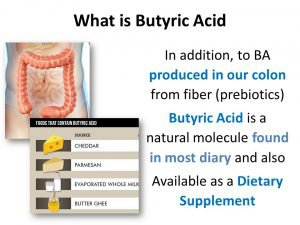 Butyric-Acid-From-Bacteria-what is
