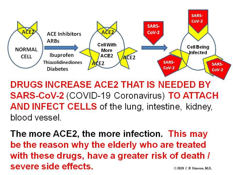 ace2 receptor infection