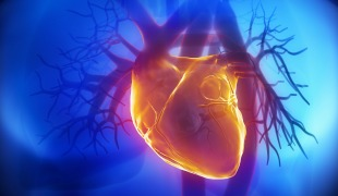 Selenium and CoQ10 Combo Cuts Heart Disease Deaths in Half